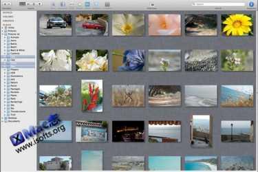 Mac平台优秀的看图软件 : Lyn
