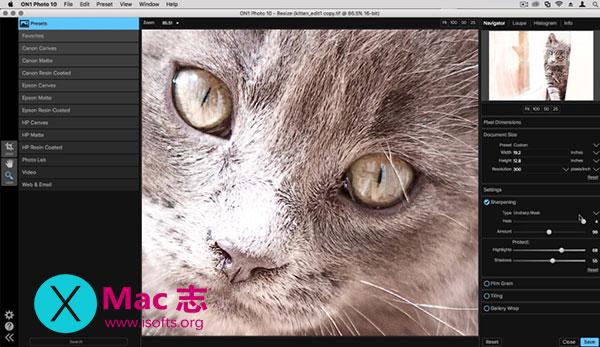 [Mac]无损照片放大工具 : ON1 Resize