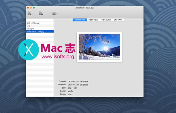 [Mac]文件信息查看工具 : Any File Info