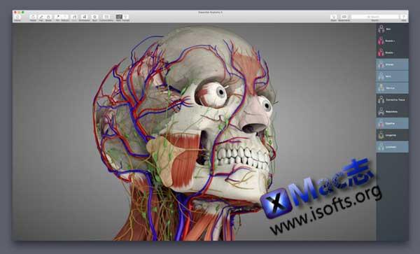 [Mac] 3D高清看遍人体全构造 : Complete Anatomy