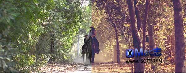 [Mac] FCPX的30组复古陈旧风格化调色插件 : Pixel Film Studios ProVintage