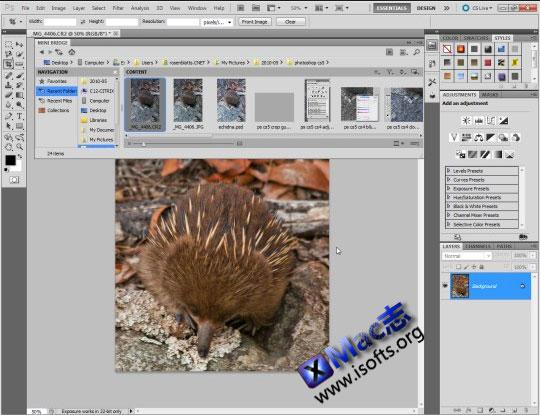Adobe photoshop CS5.1 for Mac简体中文版