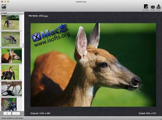 Mac平台支持拖拽操作的图片尺寸修改(缩放)工具 : Drag-N-Scale