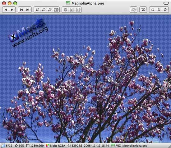 Xee : Mac平台简单易用的图像浏览器