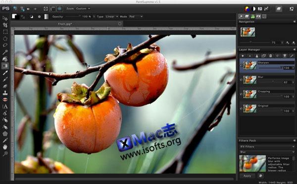 Mac平台的图片快速编辑润色处理工具 : PaintSupreme