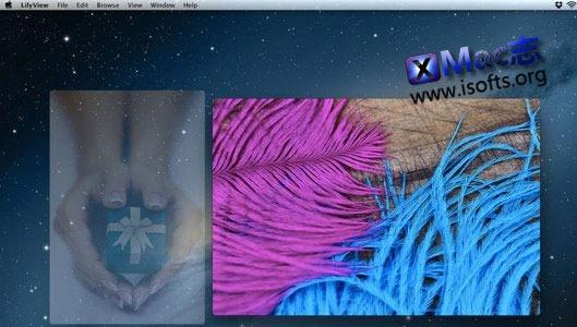 [Mac]轻便的看图软件 : LilyView