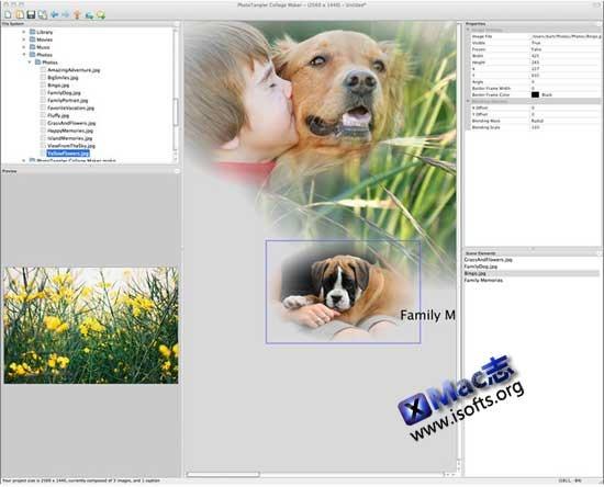 [Mac]图片拼接合成工具 : PhotoTangler Collage Maker