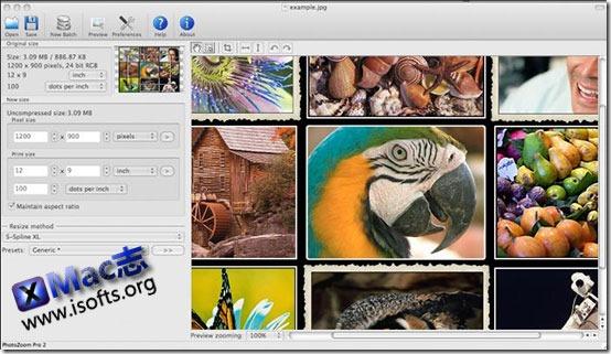 [Mac]对数码图片进行无损放大的工具 :  PhotoZoom Pro