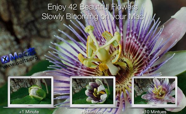 [Mac]魔幻花卉场景屏保 : Magic Flowers